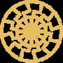 icone VSDP argentina